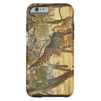 Adult female and juvenile Giraffe, Giraffa Tough iPhone 6 Case