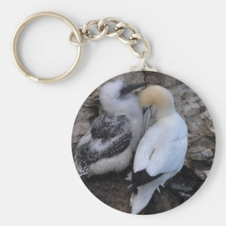 Adult Gannet with Chick Key Ring