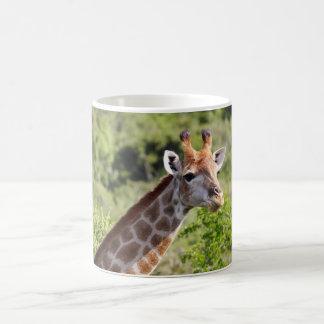 Adult Giraffe Face and Neck Mug