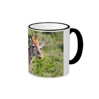 Adult Giraffe Face and Neck Mugs