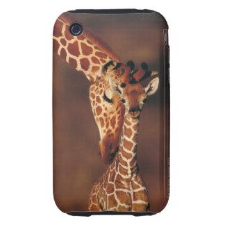 Adult Giraffe with calf (Giraffa camelopardalis) iPhone 3 Tough Covers