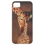 Adult Giraffe with calf (Giraffa camelopardalis) Case For The iPhone 5