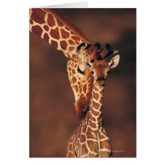 Adult Giraffe with calf (Giraffa camelopardalis) Greeting Card