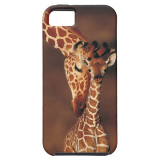 Adult Giraffe with calf (Giraffa camelopardalis) iPhone 5 Cases