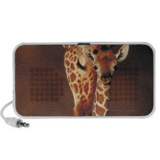 Adult Giraffe with calf (Giraffa camelopardalis) Mp3 Speakers