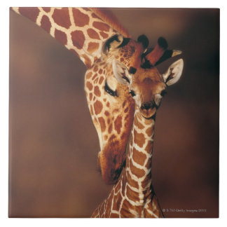 Adult Giraffe with calf (Giraffa camelopardalis) Tile
