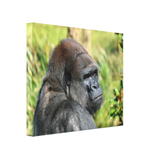 Adult Gorilla Gallery Wrapped Canvas