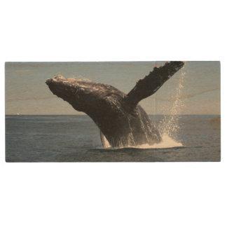 Adult Humpback Whale Breaching Wood USB 2.0 Flash Drive