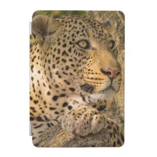 Adult Leopard (Panthera Pardus) Rests iPad Mini Cover