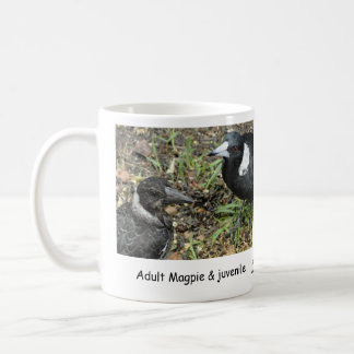 Adult Magpie with Juvenile Mugs