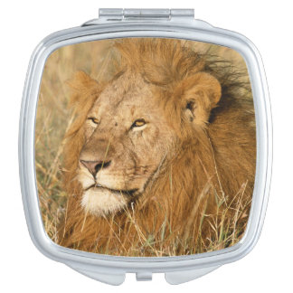 Adult male Lion at first light Compact Mirror
