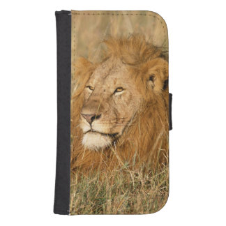 Adult male Lion at first light Samsung S4 Wallet Case