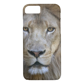Adult male lion at the Sacramento Zoo, CA iPhone 7 Case