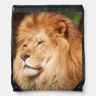 Adult male Lion Drawstring Bag