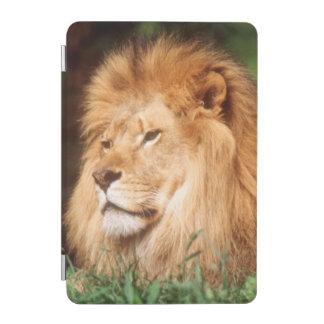 Adult male Lion iPad Mini Cover