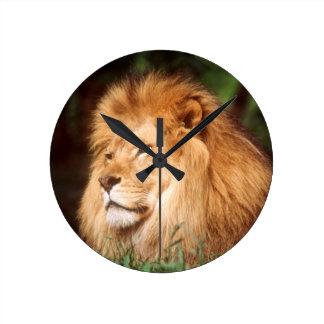 Adult male Lion Round Clock