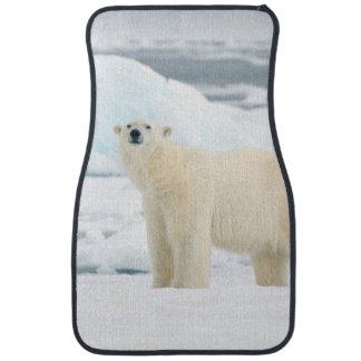 Adult polar bear in search of food floor mat
