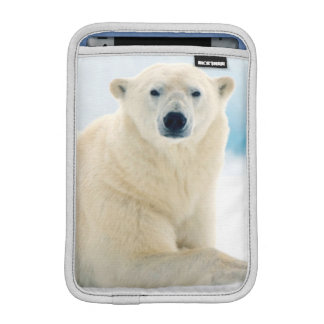 Adult polar bear large boar on the summer ice iPad mini sleeve