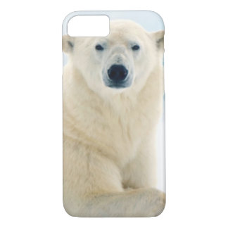 Adult polar bear large boar on the summer ice iPhone 8/7 case