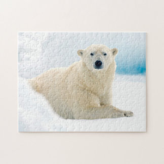 Adult polar bear large boar on the summer ice jigsaw puzzle