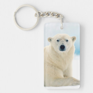 Adult polar bear large boar on the summer ice key ring