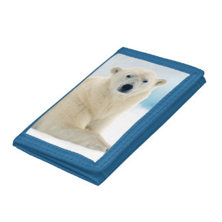 Adult polar bear large boar on the summer ice trifold wallet
