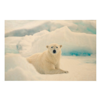 Adult polar bear large boar on the summer ice wood wall decor