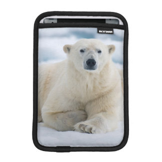 Adult polar bear on the summer pack ice iPad mini sleeve