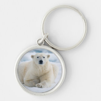 Adult polar bear on the summer pack ice key ring