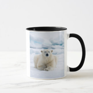 Adult polar bear on the summer pack ice mug
