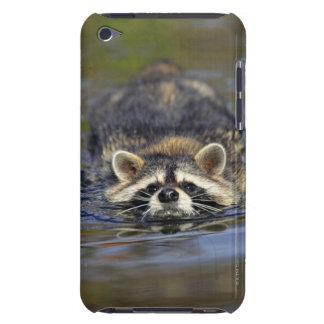 Adult Raccoon, Procyon lotorOrder : iPod Case-Mate Case