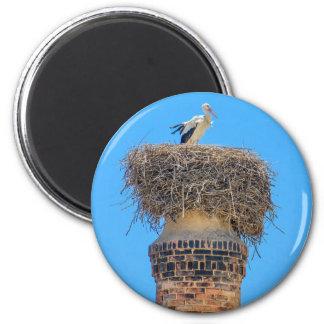 Adult stork in nest on chimney.JPG Magnet
