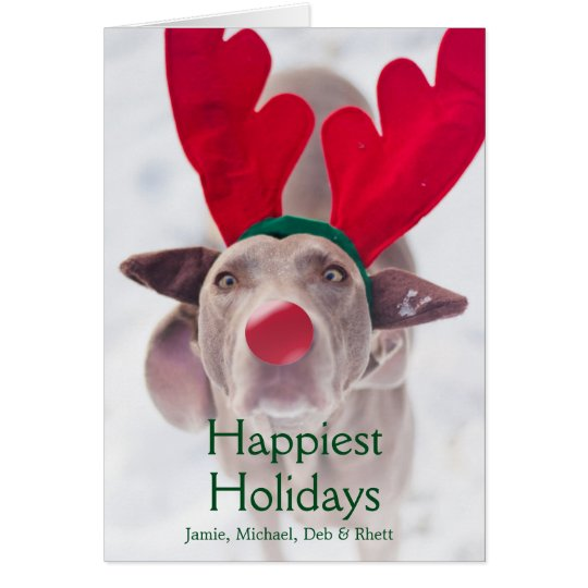 Adult Weimaraner dog wearing red antler headband Card