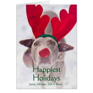 Adult Weimaraner dog wearing red antler headband Greeting Card