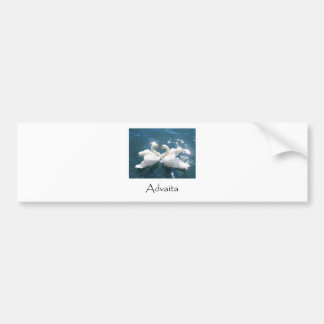 Advaita Swans Bumper Sticker