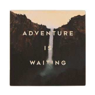 // Adventure is Waiting // Wood Coaster