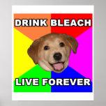 Advice Dog Poster