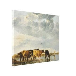 Aelbert Cuyp - Cows in a River Canvas Print