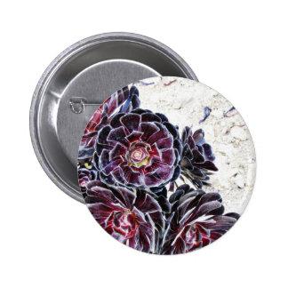 Aeonium Flower On Dry Rocks 6 Cm Round Badge