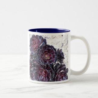 aeonium flower on dry rocks two-toned ceramic mug