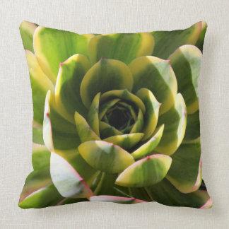 Aeonium Starburst Pillow Throw Cushions