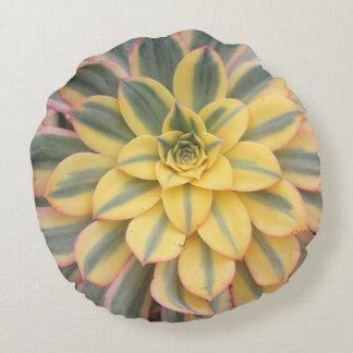 Aeonium 'Sunburst' Succulent Throw Pillow Round Cushion