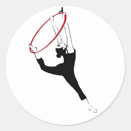 Aerial Hoop Stickers