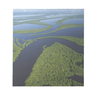 Aerial of Anavilhanas Archipelago, Flooded Notepad