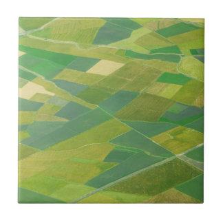 Aerial Of Farmlands In Ethiopia Tile