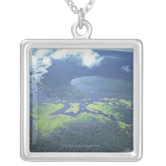 Aerial shot of Amazon forest Silver Plated Necklace