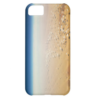 Aerial view of a desert iPhone 5C case