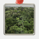 Aerial view of Amazon Rain forest Christmas Ornament