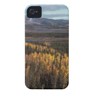 AERIAL VIEW OF AUTUMN LANDSCAPE iPhone 4 CASE