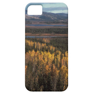 AERIAL VIEW OF AUTUMN LANDSCAPE iPhone 5 CASES